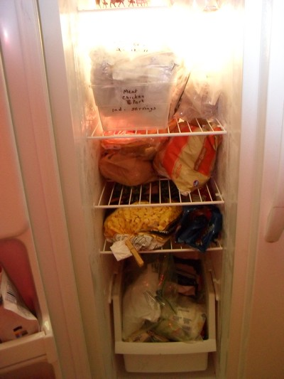 Photo of an organized freezer.