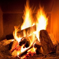 Logs burning in a fireplace.