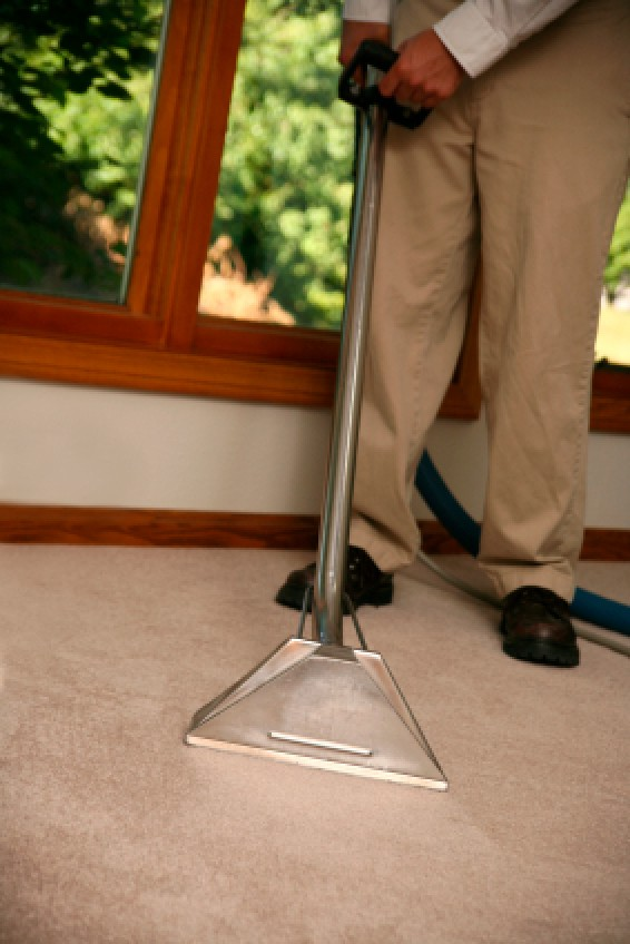Saving Money On Carpet Cleaning Thriftyfun
