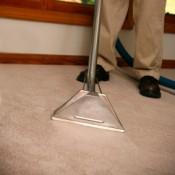 Man Steam Cleaning a Carpet