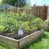 Photo of raised bed made with wood.