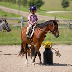 A boy on a horse taking horseback riding lessons.