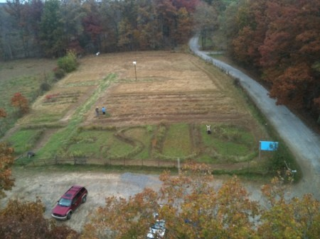 Jesus Message in Field