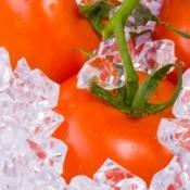 Tomatoes on ice.