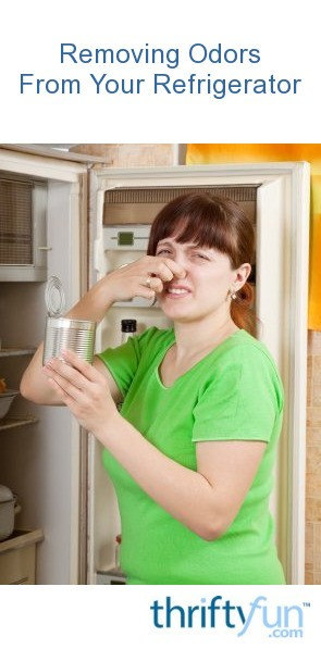 Removing Spoiled Food Odors from Refrigerator