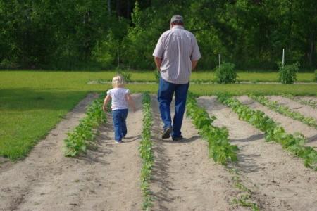 Grandpa and Grand Daughter Walking in Garden