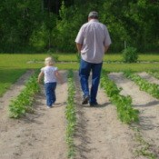Grandpa and Grand Daughter Walking in Garden