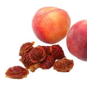 Peach pits and fruit on white background.