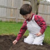 Boy sowing seeds in garden