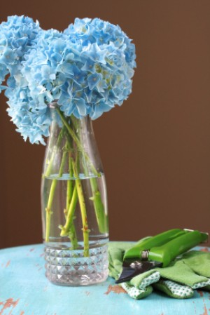 vase with hydrangea flowers on white table with brown background