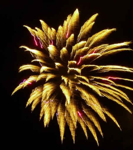 Yellow Fireworks with Pink Streaks