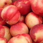 Several nectarines from the farmer's market.