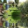 An English garden in summer reflected in a pond.