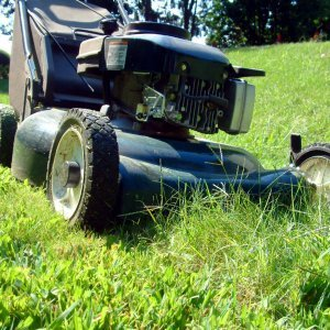 Lawnmower mowing long grass.