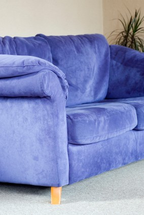 Blue Suede Couch in Carpeted  Living Room