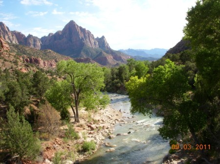 River Flowing Through Zion National Park
