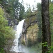 Gold Falls Oregon