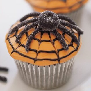 Spiderweb cupcake with a candy spider.