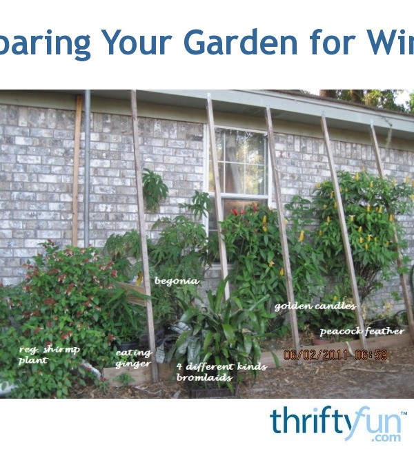 Preparing Your Garden For Winter Thriftyfun