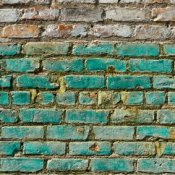Green paint on a brick wall.