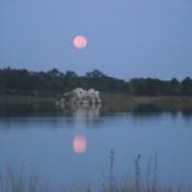 Moon Reflecting on Lake in Weekiwachee