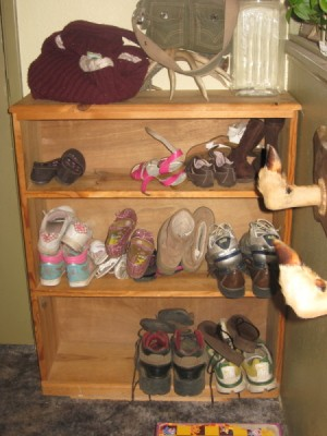 Bookshelf with different sized shoes on it.shoes