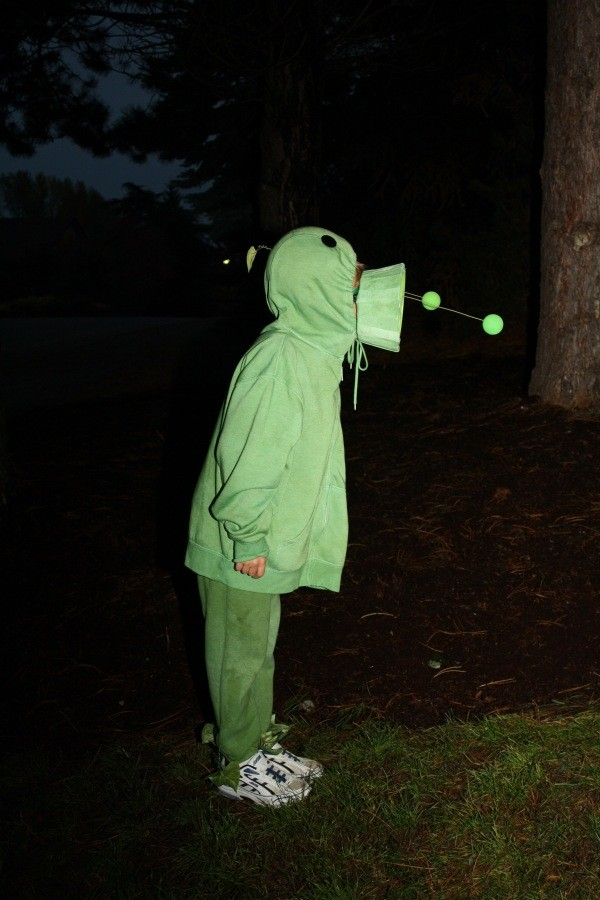 Boy in Plant Costume Standing in Yard