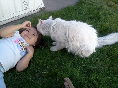 Colt the Cat on Lawn with Little Girl