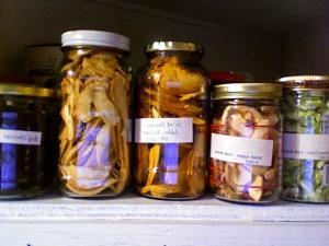 Jars of dried food on a shelf.
