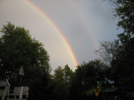 Large Double Rainbow Over Trees