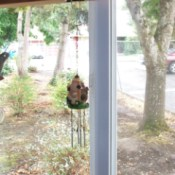 Windchime hanging from a shelf by a binder clip.