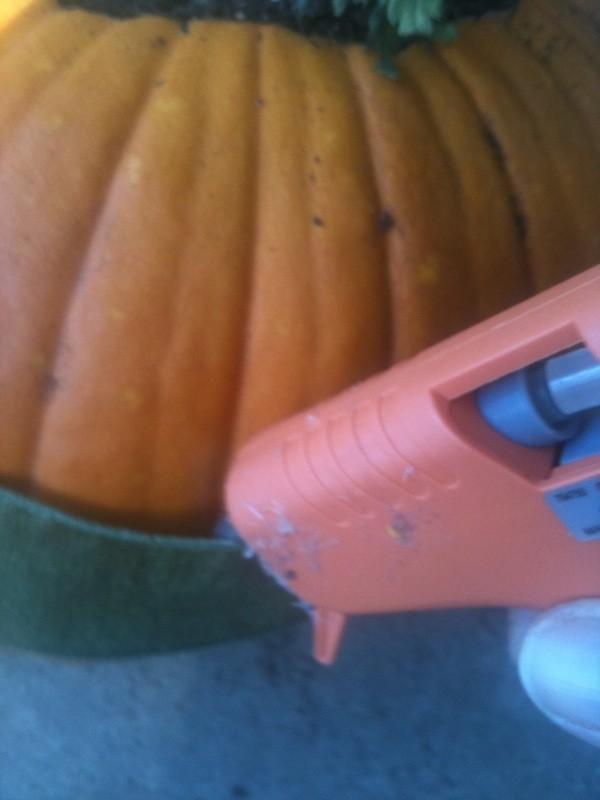 Pumpkin Planters - Glue ribbon in place