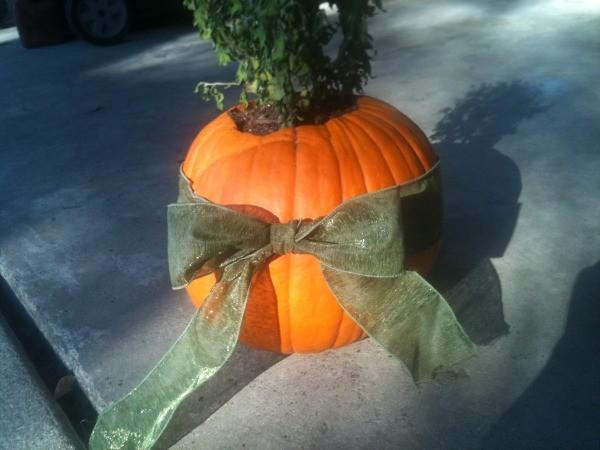 Pumpkin Planters - Bow on pumpkin planter