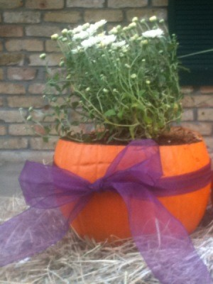 Pumpkin Planter 2