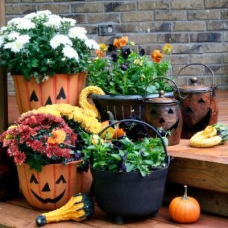 Pumpkin planters and other Fall decorations.