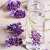 Lavender flower in clear liquid filled jar.