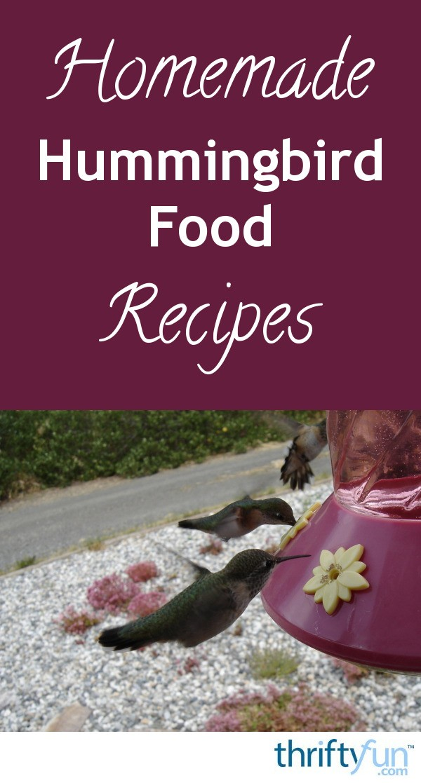 Homemade hummingbird food recipes thriftyfun forumfinder Image collections