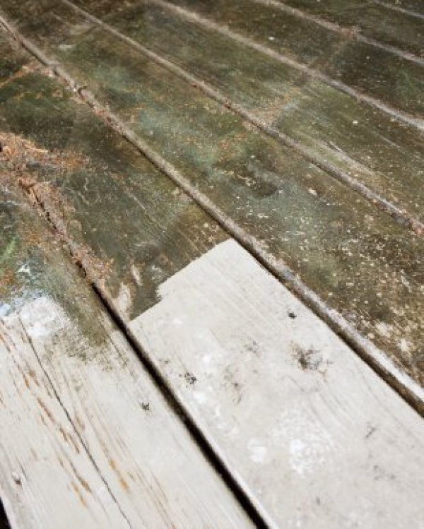 Removing Mildew From Wood Thriftyfun