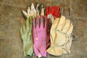 Group of Garden Gloves