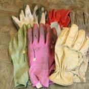 Group of Garden Gloves