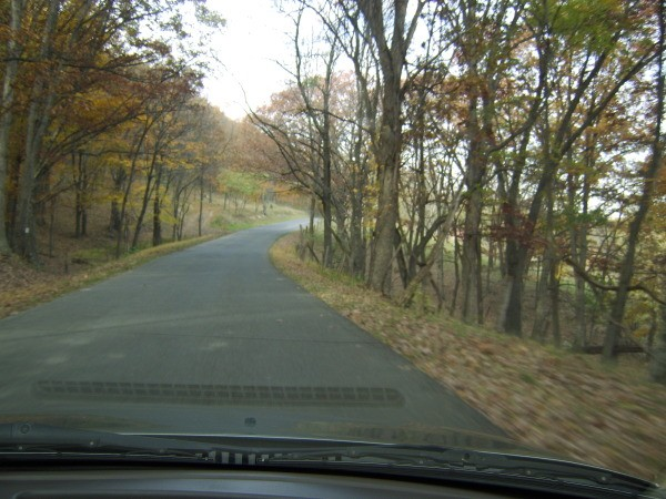 View of Fall Road from Inside Vehicle