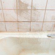 Moldy Tiles and Bathtub