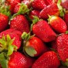 Selecting Good Strawberries. Storing Strawberries.Bunch of Ripe Red Streawberries