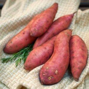 Sweet potatoes lying on a towel.
