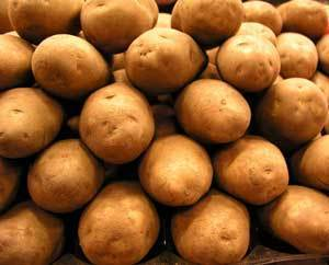 Photo of lots of potatoes.