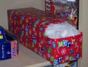 A pop can box made into a bag organizer.