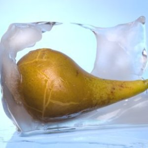 Pear melting out of a block of ice.