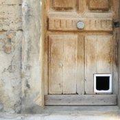 A cat door installed in an old door.