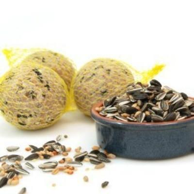 Suet balls and bird seed.