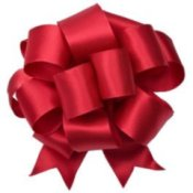A large red Christmas bow.